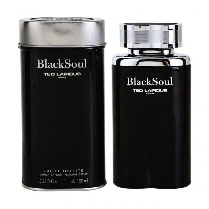 perfume ted lapidus black soul edt masculino 100 ml 51136 2000 203423 1